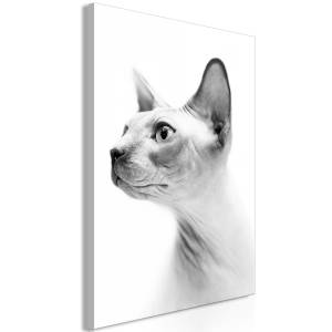 Πίνακας - Hairless Cat (1 Part) Vertical - 40x60