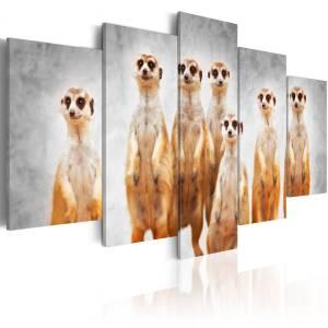 Πίνακας - Meerkats - 100x50