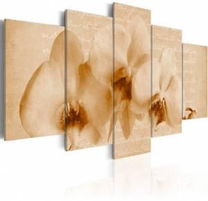 Πίνακας - Orchid and melancholy - 200x100