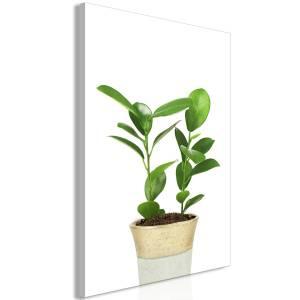 Πίνακας - Plant In Pot (1 Part) Vertical - 60x90