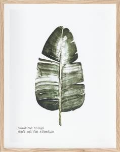 Πίνακας Botaniq II